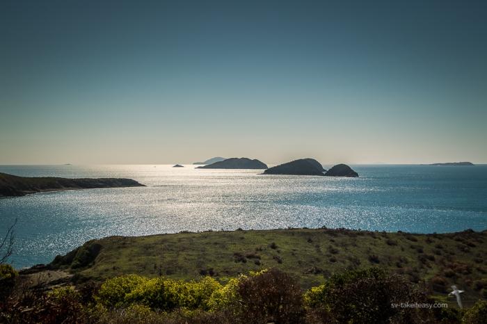 Digby Island -9292
