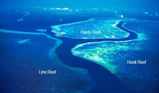 aerial-hook-hardy-line-reefs