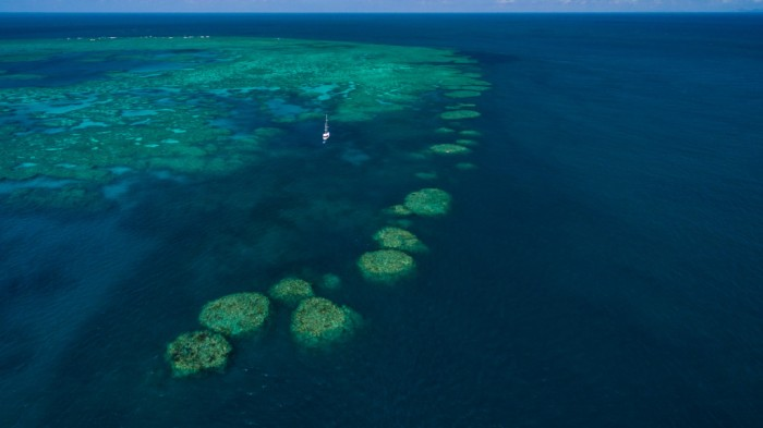 Bait_reef_showing_stepping_stones