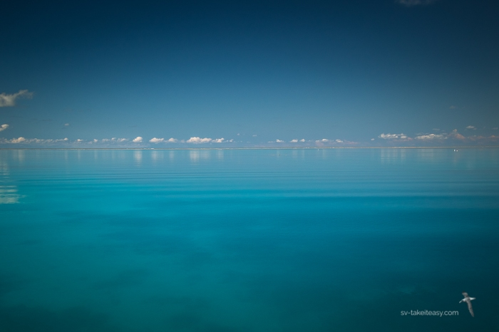 Fitzroy Reef -0742