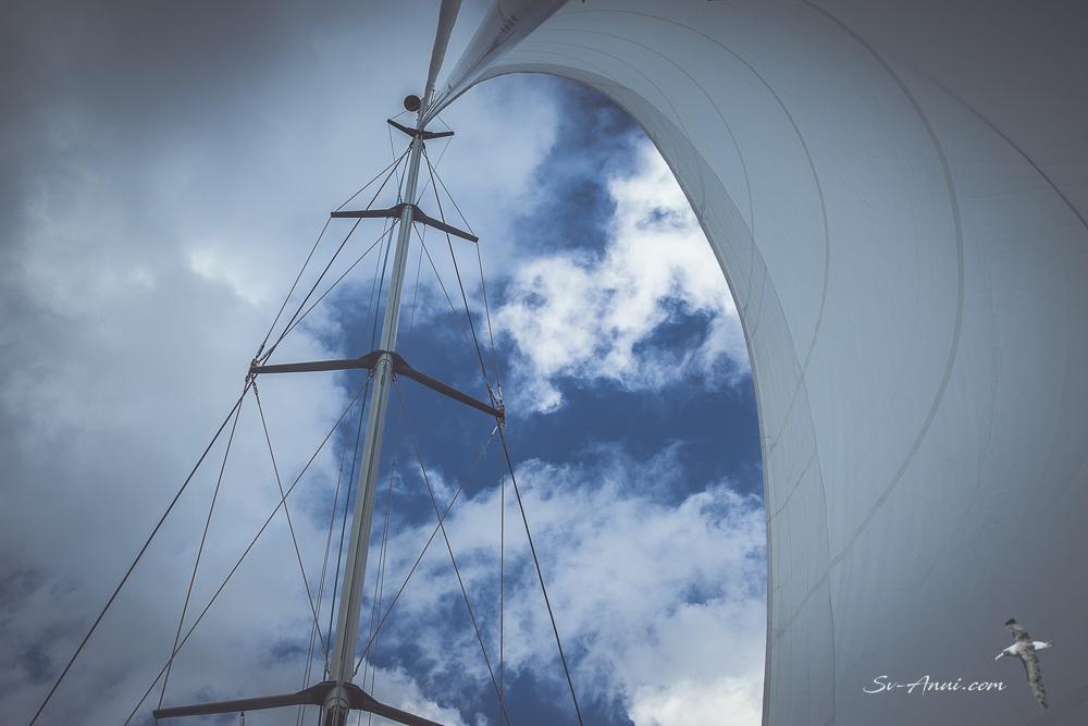 Anui, sailing under jib