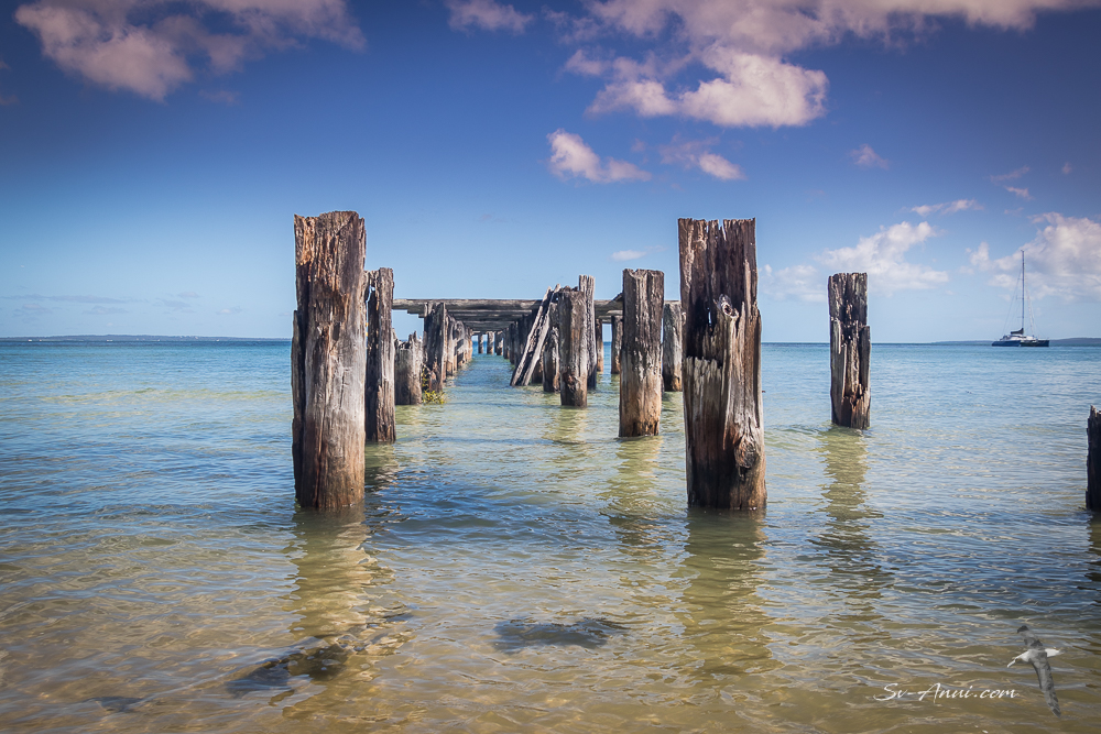 Ruined McKenzie Jetty - Fraser Island