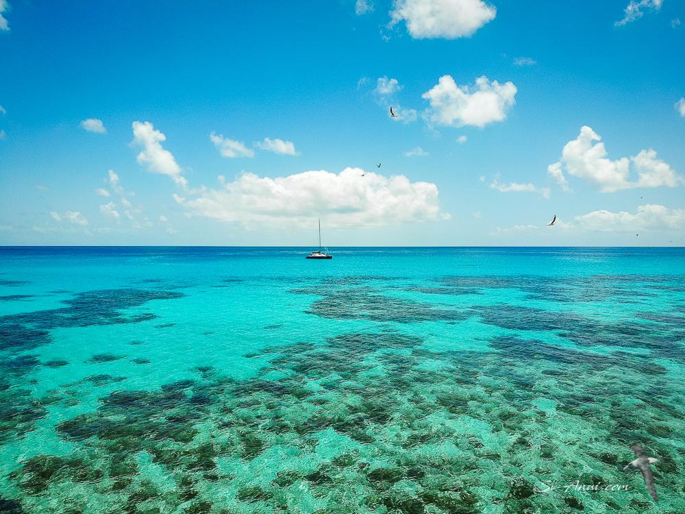 Anui at Taylor Reef