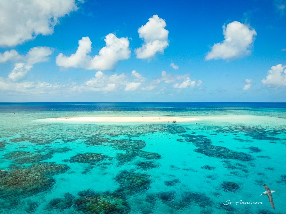Taylor Cay