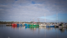 Colourful fleet of fishing boats at Lakes Entrance