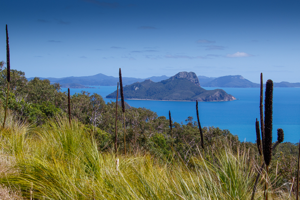 Pentecost Island and the Whitsundays