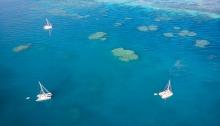 Credlin Reefs